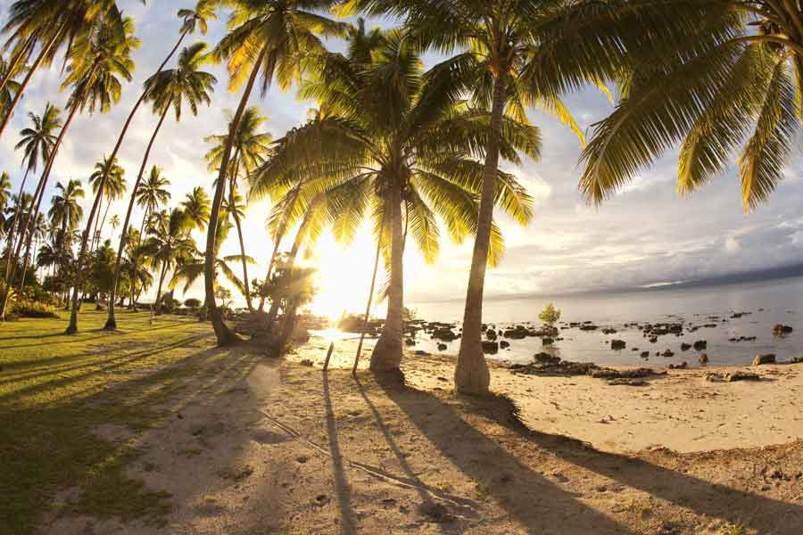 Travel-Agent-News-for-Paul-Gauguin-Cruises-and-2019-Sales-Tools