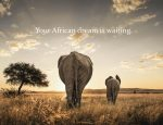 Travel Agent News for African Travel and Travel Agent Contest