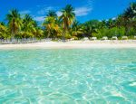 Travel Agent News for AMResorts and fourth Annual Conference