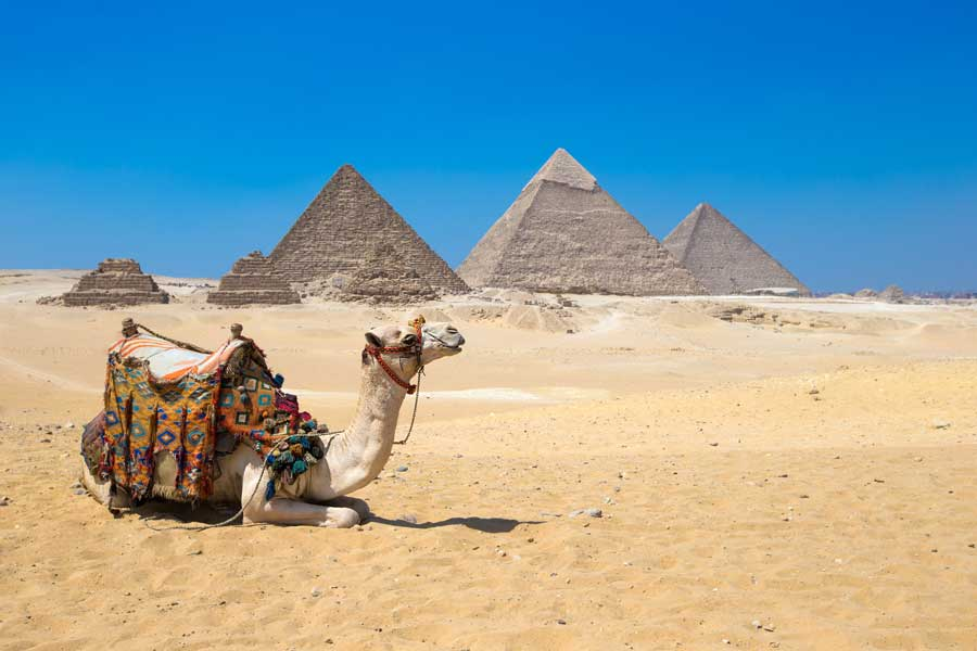Travel-Agent-News-for-Insight-Vacations-and-Luxury-Gold-Vacations-to-Egypt