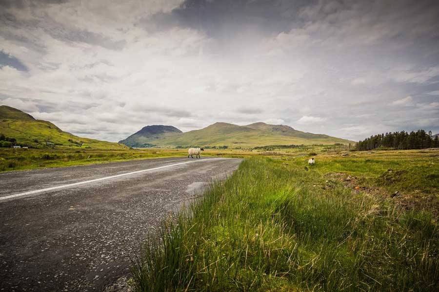 Travel Agent News for Tourism in Ireland and Self Drive Vacation Packages