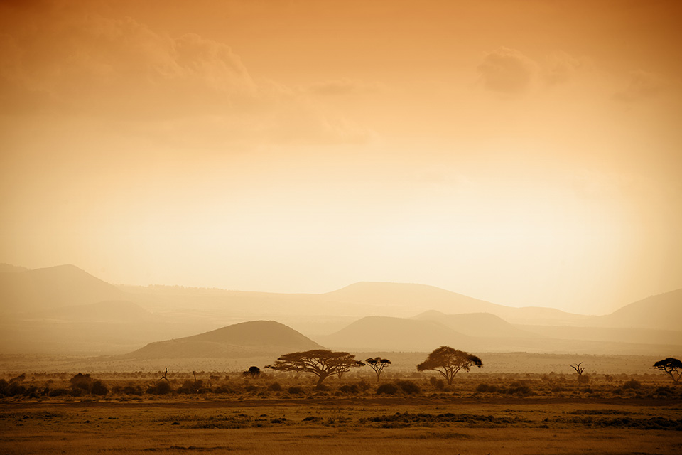 Travel Agent News for African Travel Inc