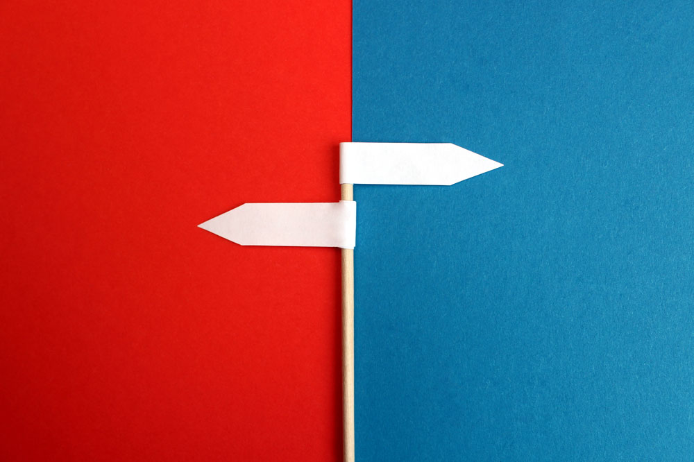 Franchise vs. Host: Choosing the Best Path for Your Travel Business