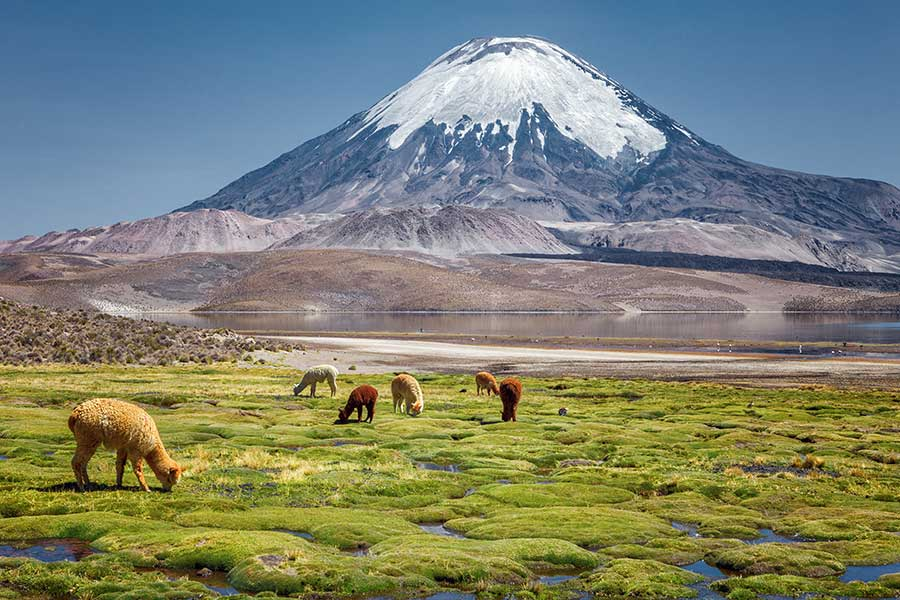 Chile Tourism Board Supports National Tourism Sector in Preparation for Travel Rebound